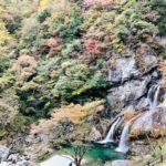 【休日の遊び】穴場スポット!?高知県土佐町にある絶景紅葉SPOT「瀬戸川渓谷」とは?